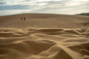 Red sand dunes.