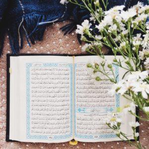 Learn Quran.